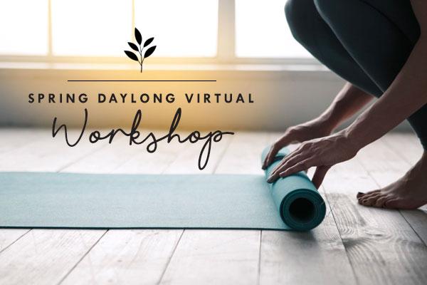 spring daylong virtual workshop